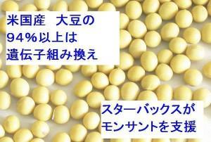 遺伝子組み換え大豆